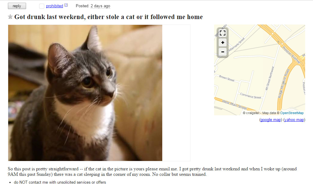 Person On Craigslist Is Sorry If They Stole A Cat (But Can't