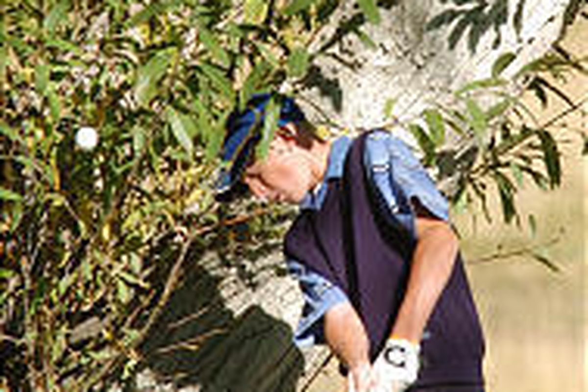 Fremont High sophomore Denny Job hits out of a tough spot at Mountain Dell Golf Course.