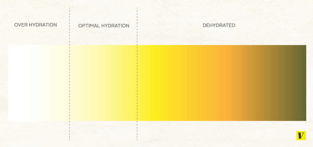 Doctors generally recommend that your urine is either a