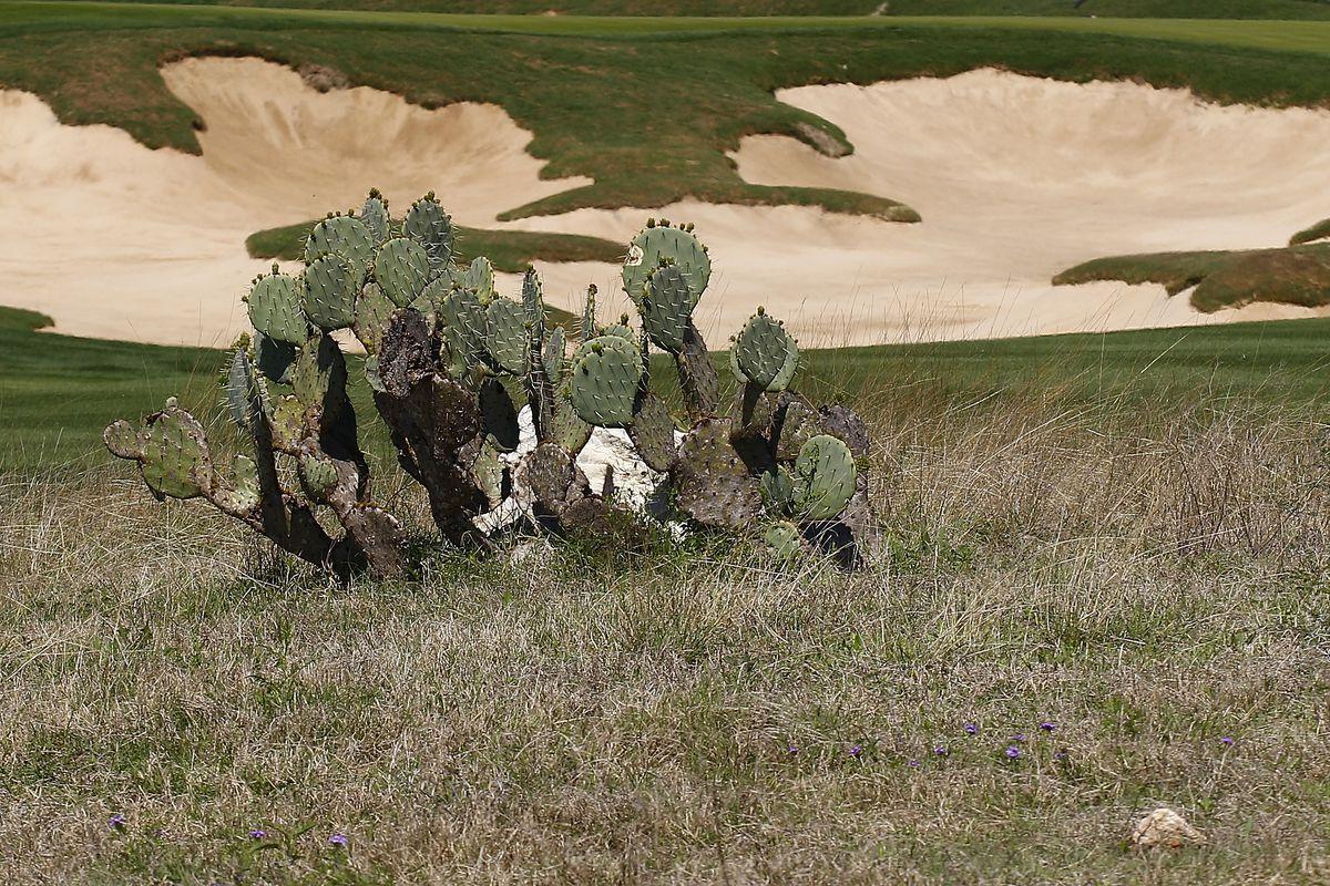 Valero Texas Open - Round Two