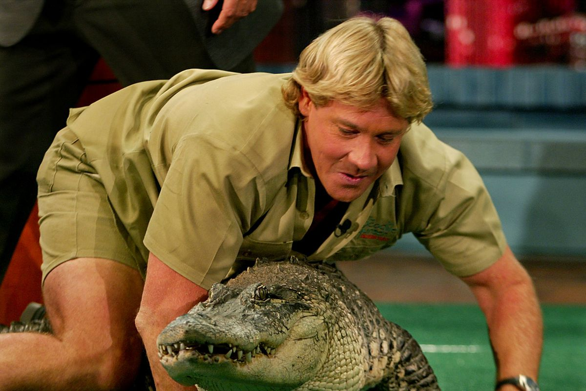 Steve Irwin appears with an alligator on the Tonight Show in 2002.