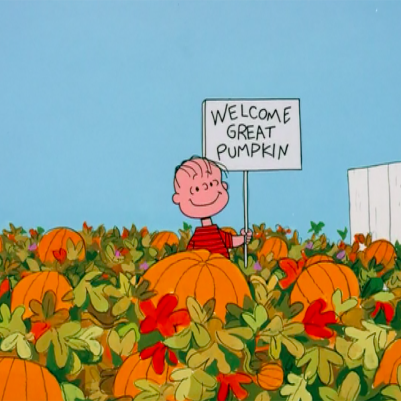 It S The Great Pumpkin Charlie Brown Is A Christmas Special