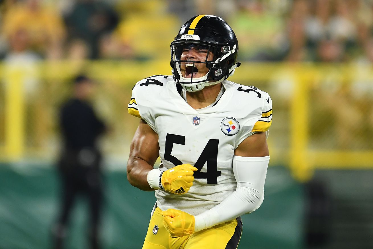 Steelers' young ILBs might prove to be a blessing in disguise