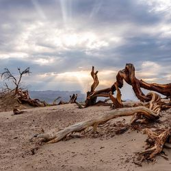 Death Valley was........ hot...