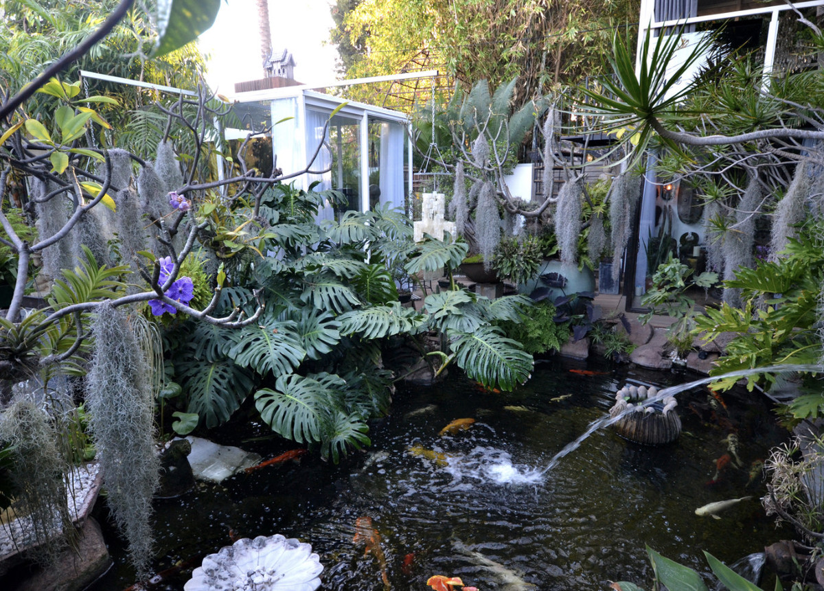 Budberry's koi pond in West Hollywood