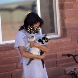 Laina Juarez holds kittens outside of her house as Utah Navajo COVID-19 Reliefprogramemployees and Utah Navajo Health System volunteers deliver food to her elders near Monument Valley in San Juan County on Wednesday, April 29, 2020. TheNavajo Nation has one of the highest per capita COVID-19 infection rates in the country.