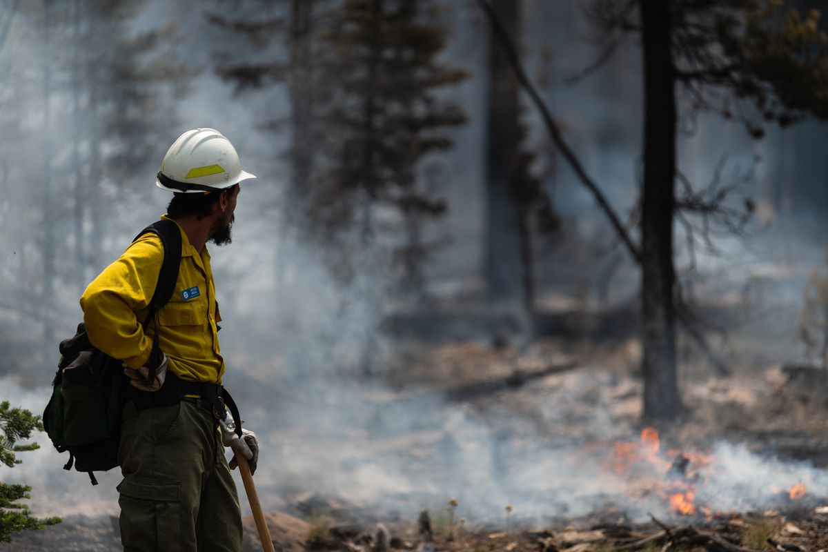 A firefighter observes smoldering trees on the northern front of Oregon's Bootleg Fire