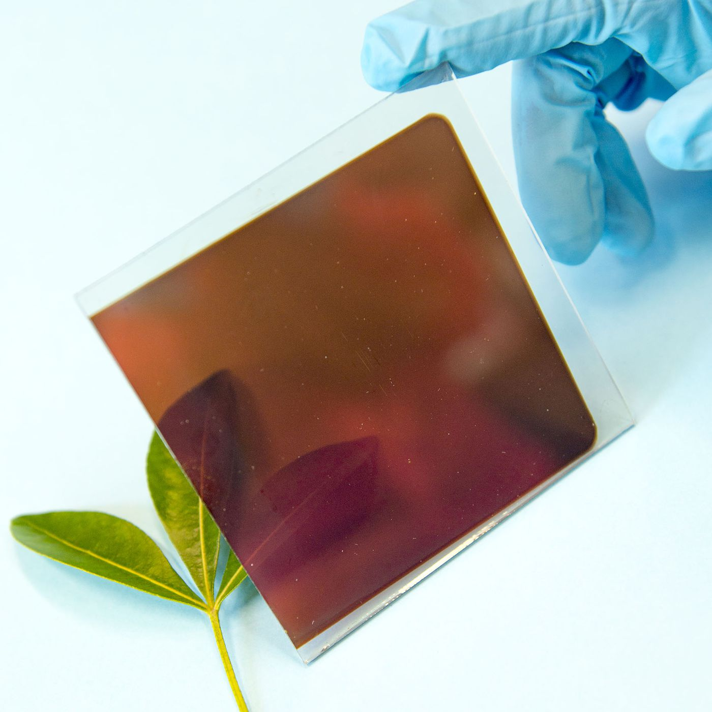 Solar power still needs to get much cheaper  Are perovskites the