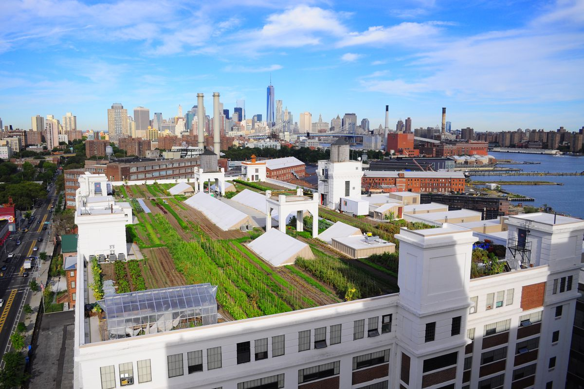 An aerial view of a rooftop farm in new york city