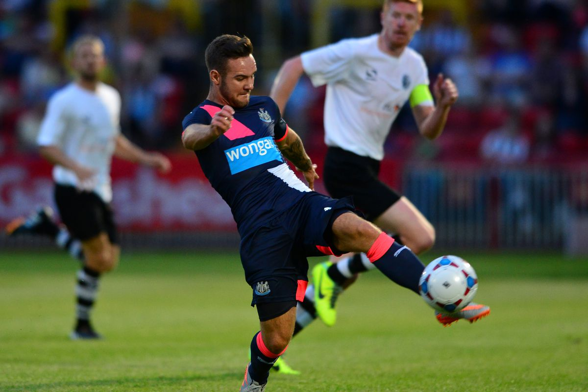 Adam Armstrong: Bolton Wanderers sign striker on loan from Newcastle United