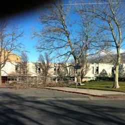 Strong winds damaged trees at Viewmont High School.