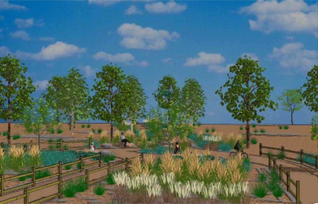 Rendering of the park's vegetation
