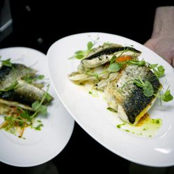 In this Wednesday, April 4, 2012 photo, Israeli chef Noam Dekkers of Liliyot restaurant holds two versions of a fish dish, one kosher for Passover and another served on a piece of bread, right, at a restaurant in Tel Aviv, Israel. The Jewish springtime holiday Passover is known as a festival of freedom, but its hallmark is a litany of dietary restrictions centered on not eating leavened bread for a week. The rules are so elaborate that chefs who want to observe the ritual law must prepare weeks before, cleaning away every last crumb, buying up doubles of kitchen utensils, and planning menus without bread or regular flour.