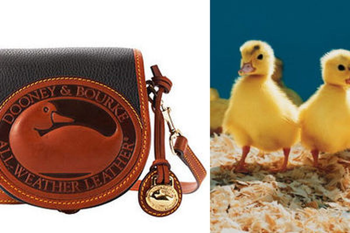 12 Brands With Animal Logos And Their Real Life Counterparts Racked