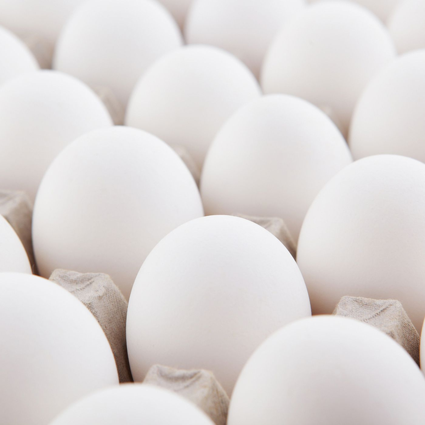 The Japanese Government Has Hatched a Plan to Raise Eggs With ...