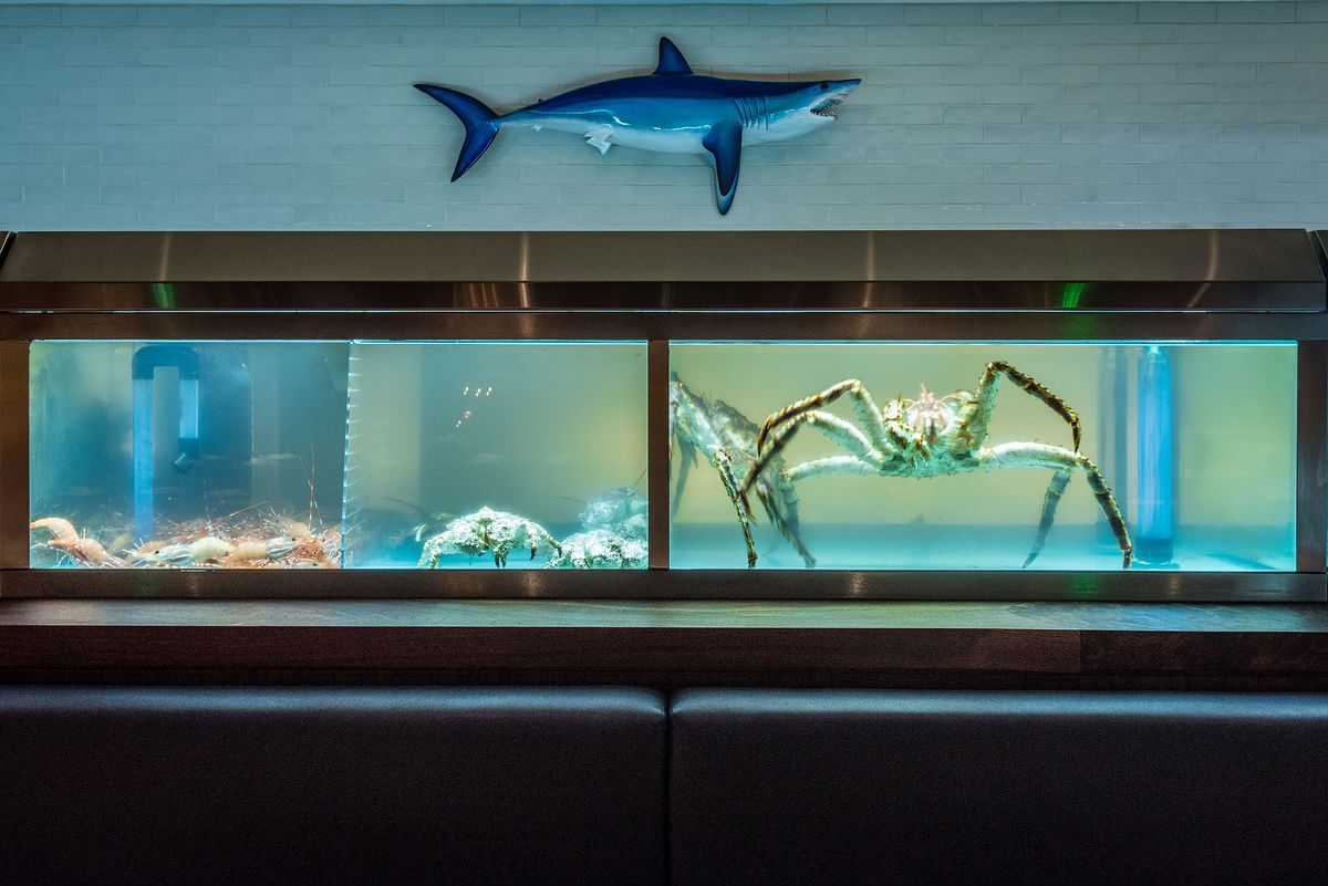 Seafood creatures abound inside a fish tank at Angler Los Angeles.