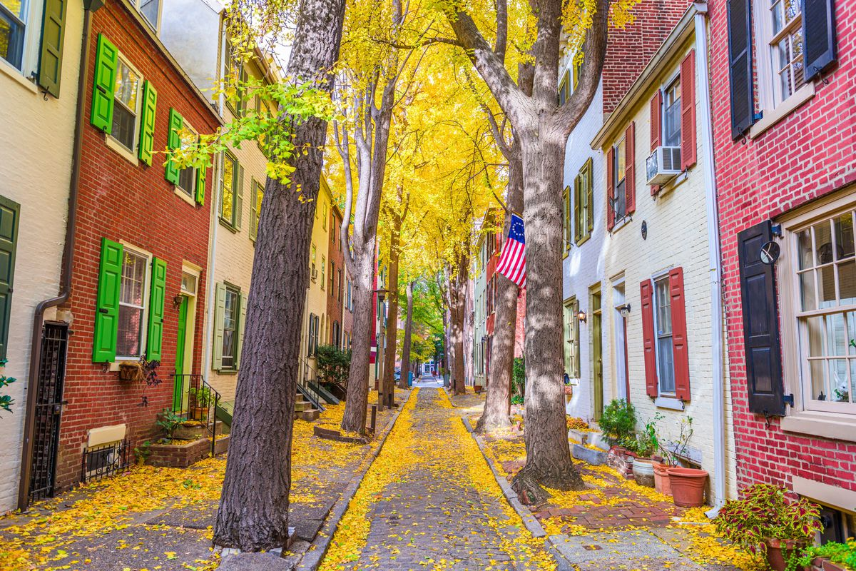 A street lined with row homes in a metropolitan Philadelphia neighborhood with large trees and fall leaves on the ground.