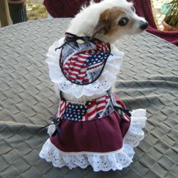 """Another  <a href=""""http://www.etsy.com/listing/74152321/american-made-patriotic-dog-dress"""" rel=""""nofollow"""">dog dress</a> (though same dog), $22.99"""