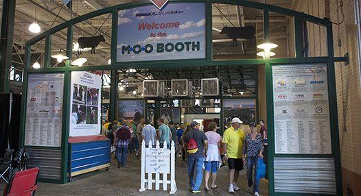 This way to free stuff. Photo courtesy MN State Fair