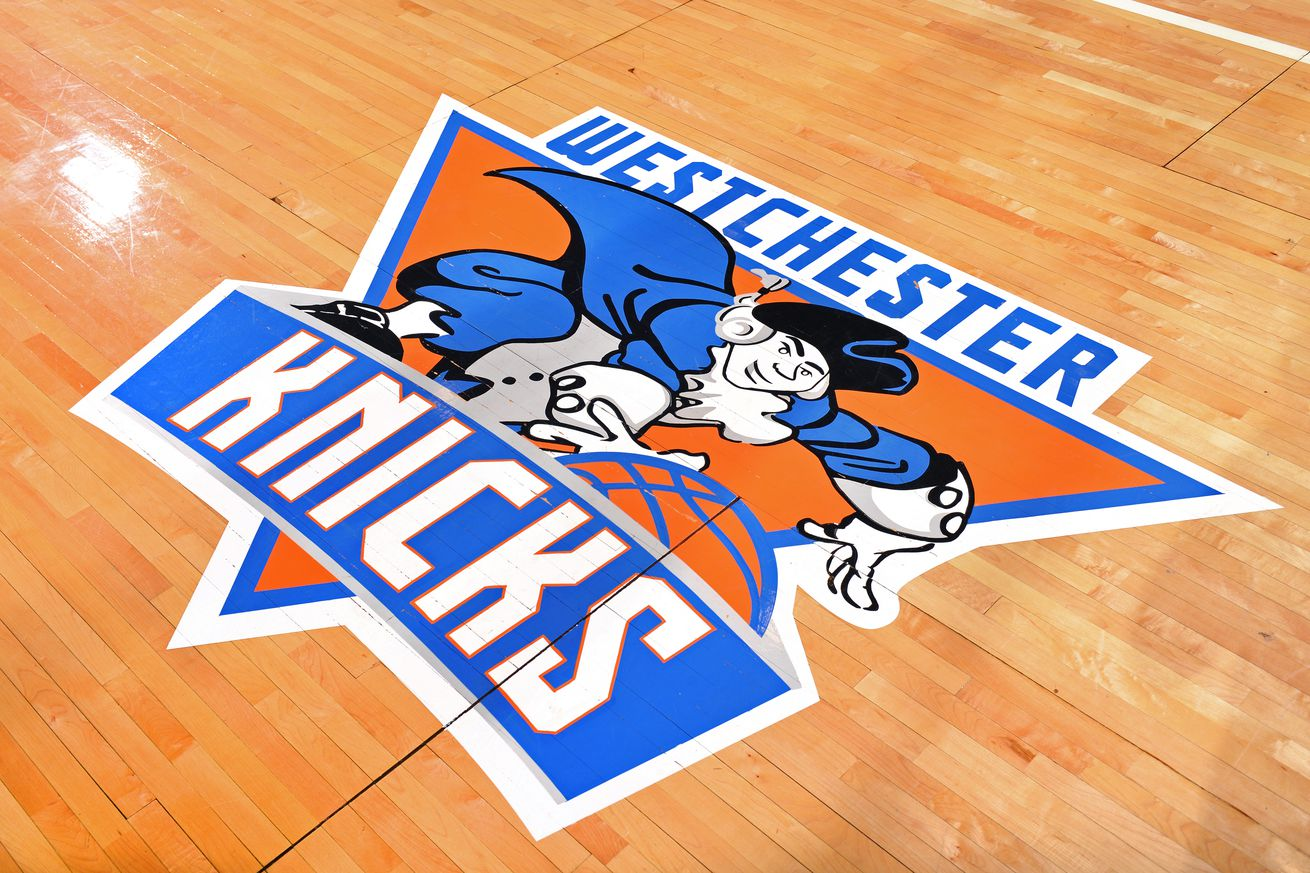 Maine Red Claws v Westchester Knicks