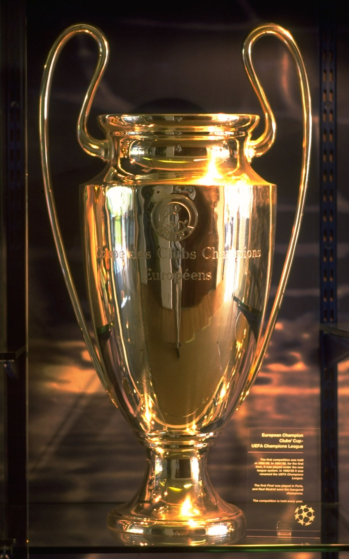 Portrait of the European Cup at UEFA Headquarters