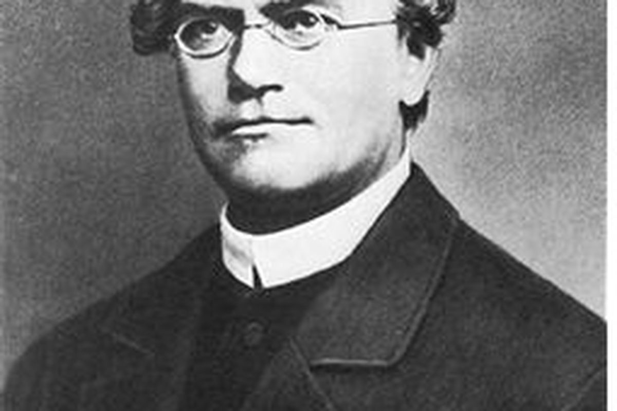 Gregor Mendel, the Father of Modern Genetics, never saw a baseball game.