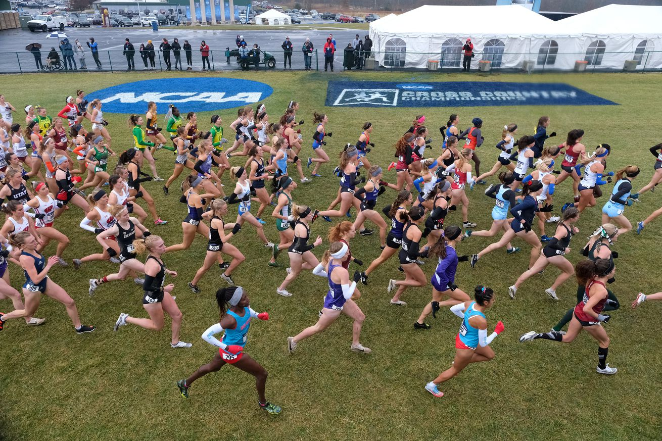 2019 NCAA Division I Men's and Women's Cross Country Championship