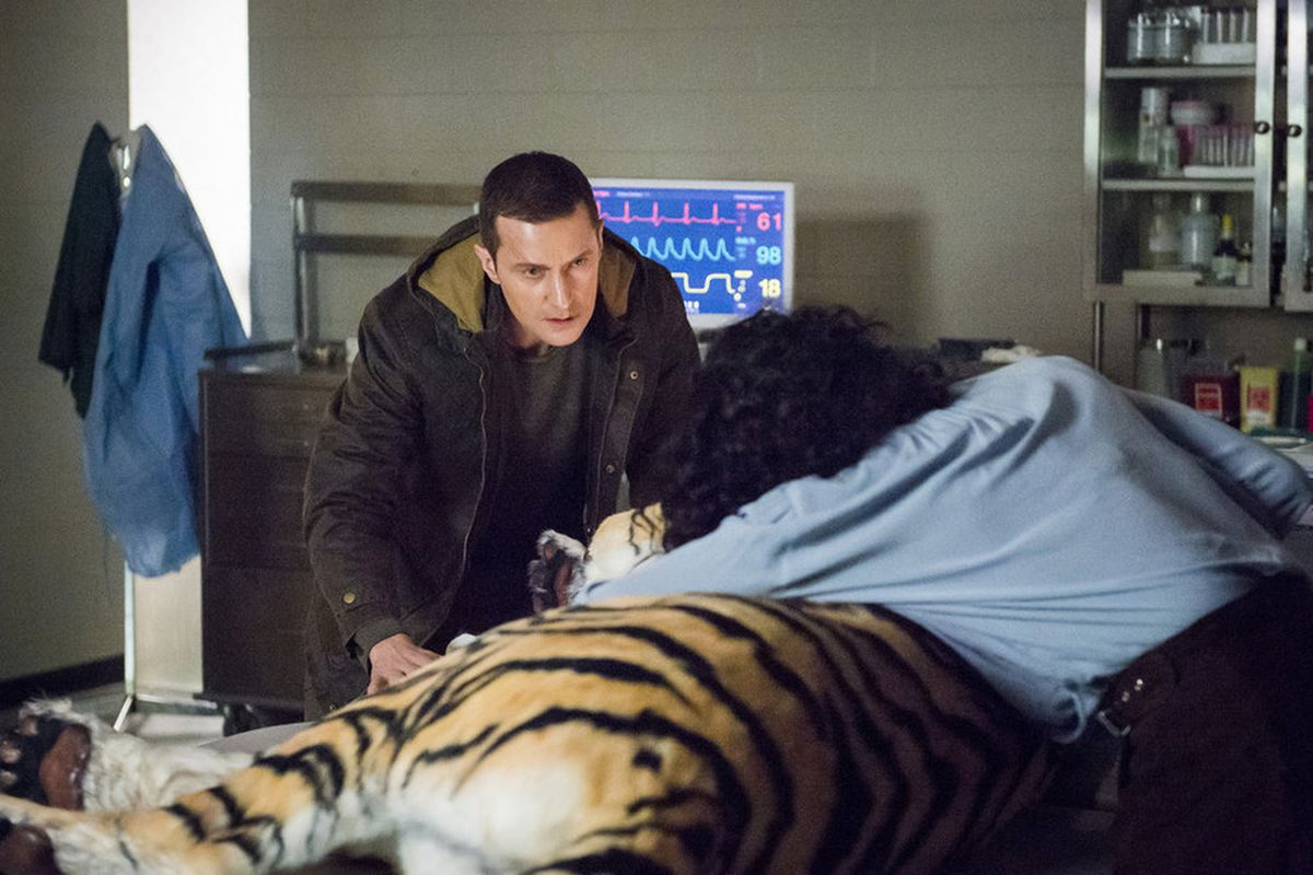 Francis (Richard Armitage) and Reba (Rutina Wesley) visit a tranquilized tiger on Hannibal.