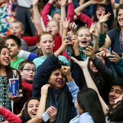 Fans cheer as free stuff is tossed to the crowd during the Salt Lake City Stars game against the Los Angeles D-Fenders at the Lifetime Activities Center in Taylorsville on Wednesday, Feb. 08, 2017.