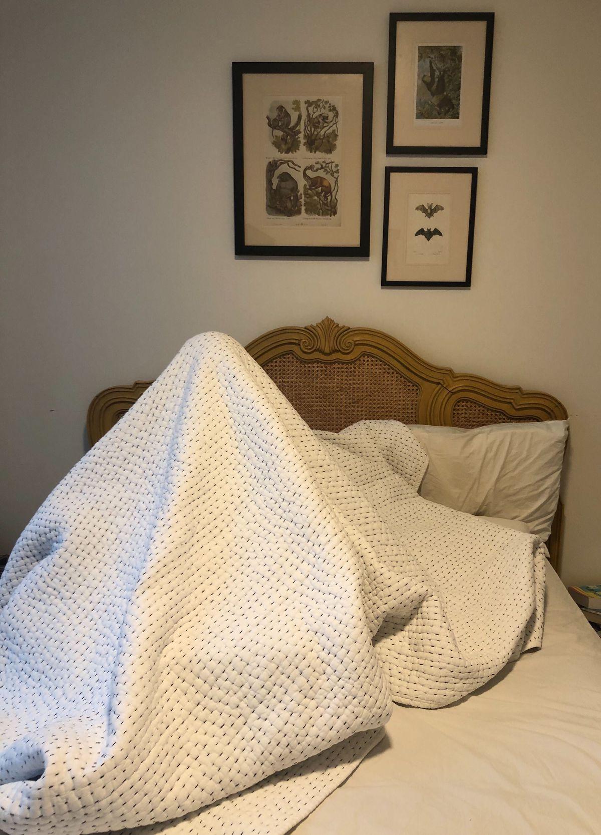 Seth under a blanket