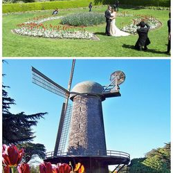 """<a href=""""http://www.golden-gate-park.com/queen-wilhelmina-tulip-garden.html"""">Queen Wilhelmina Tulip Garden</a>, 1690 John F Kennedy Dr, San Francisco, (415-813-1445): Outdoor-lovers who want to stay within city limits can't go wrong booking this beautiful"""