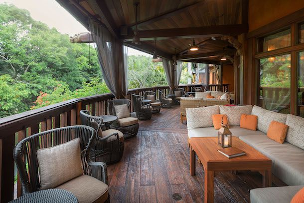 A wooden balcony with patio chairs and couches, and low tables, with tall trees surrounding the second-story area