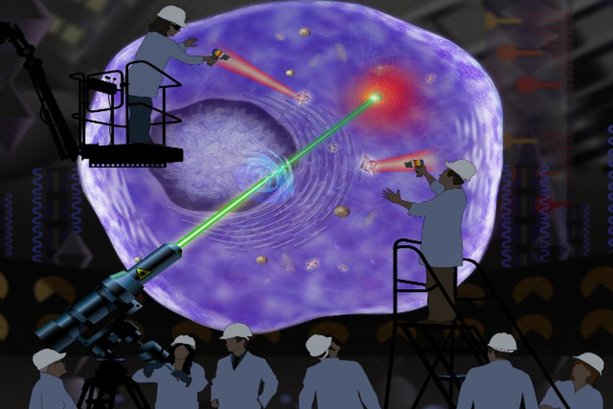 Artist conception of DARPA heating gold nanoparticles in a cell. Credit: Steven H. Lee