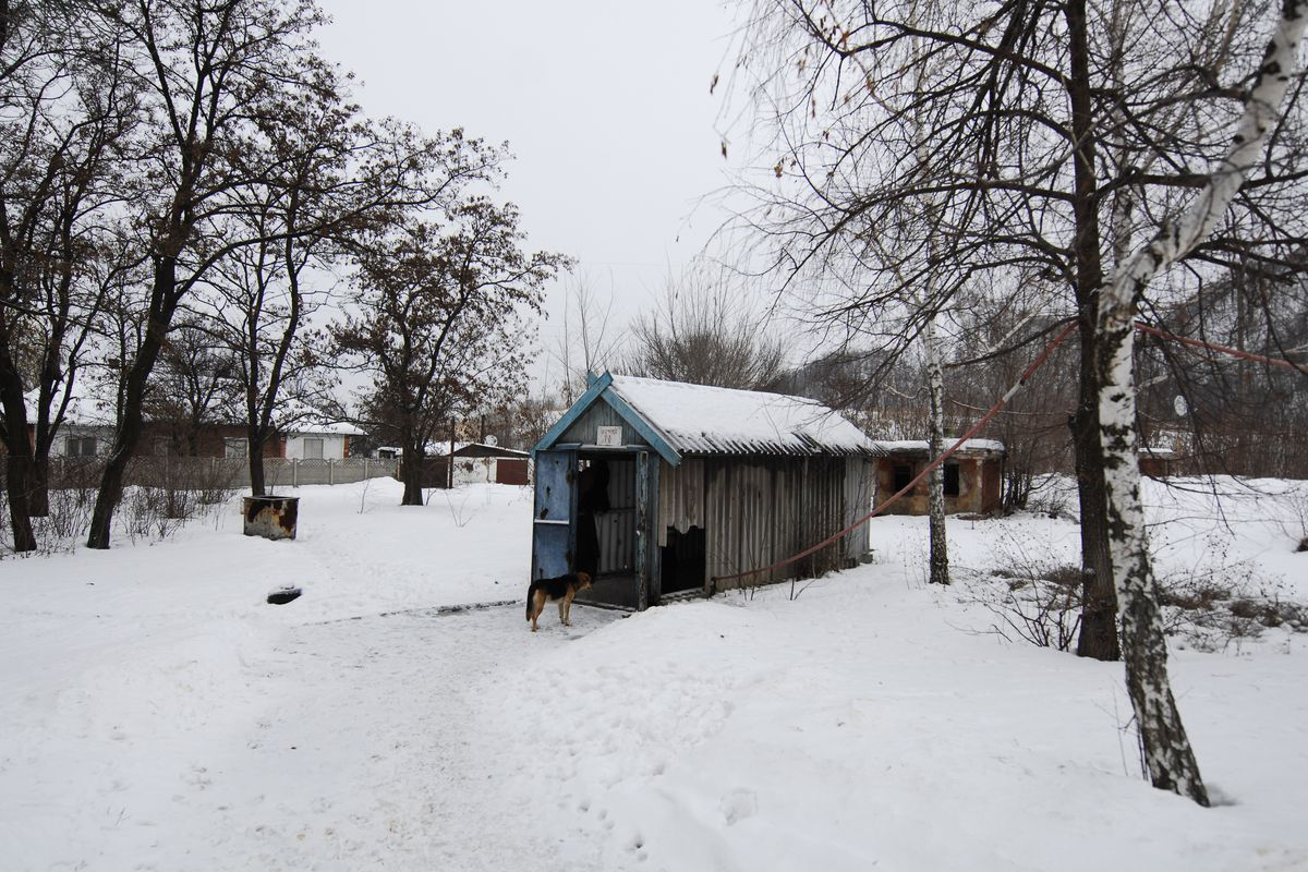 A small shed in a snowy landscape with bare trees.
