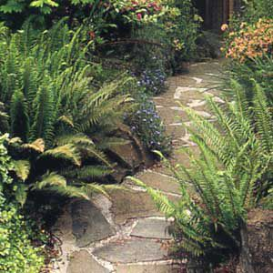 <p>STONE IS AN unusually elegant path surface</p>