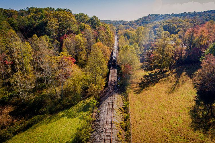 A train on tracks surrounded by trees during the fall.