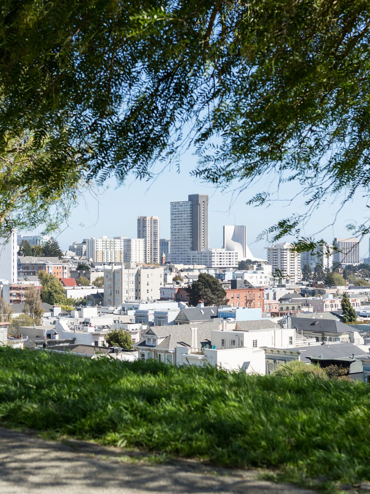 the beginner's guide to san francisco - curbed sf