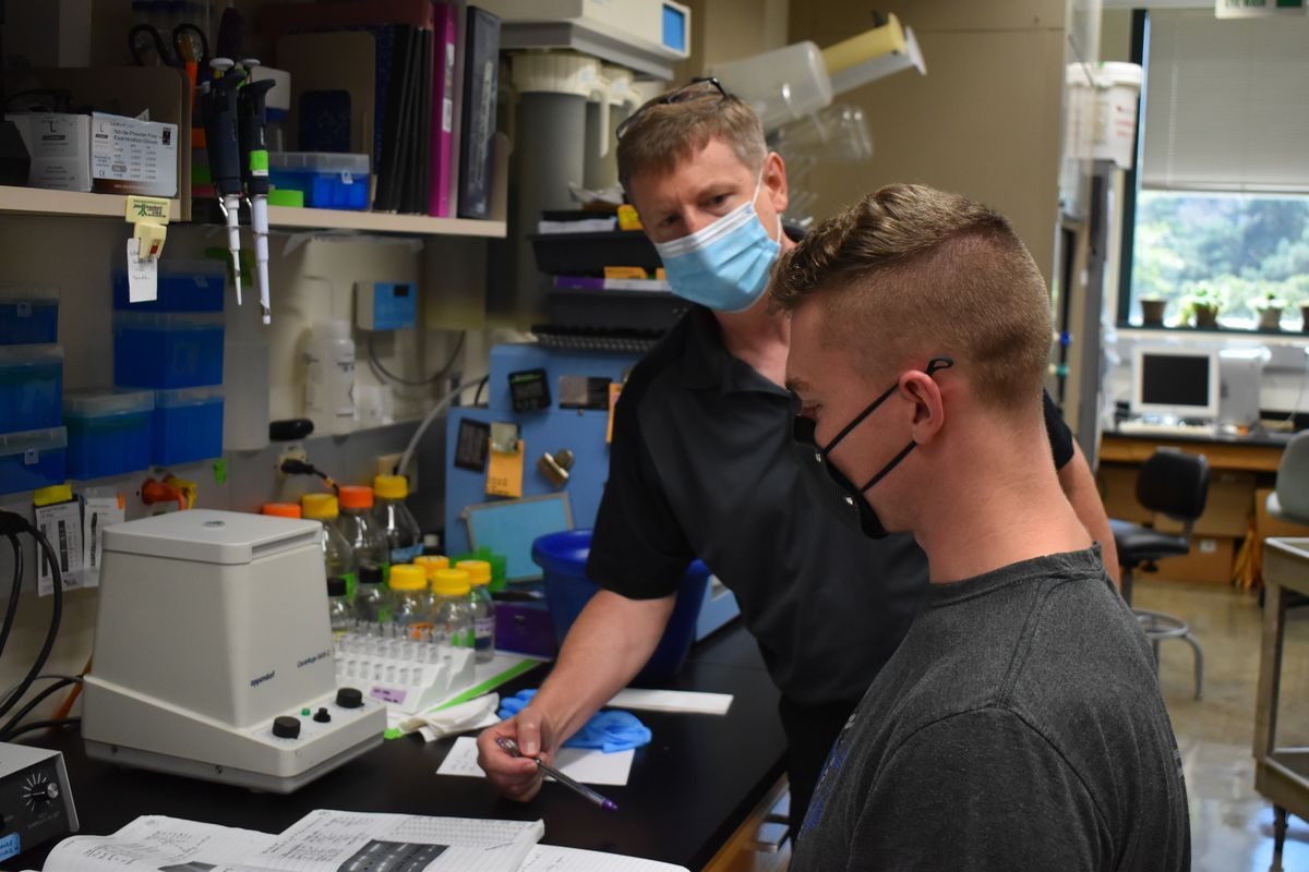 Illinois State professor John Sedbrook (left) discusses lab results with doctoral student Brice Jarvis, Aug. 17, 2020. The lab has continued operating throughout the pandemic.