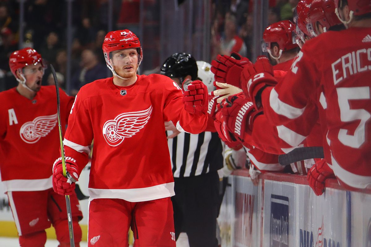 DETROIT, MICHIGAN - FEBRUARY 07: Gustav Nyquist #14 of the Detroit Red Wings celebrates his first period goal with teammates while playing the Vegas Golden Knights at Little Caesars Arena on February 07, 2019 in Detroit, Michigan.
