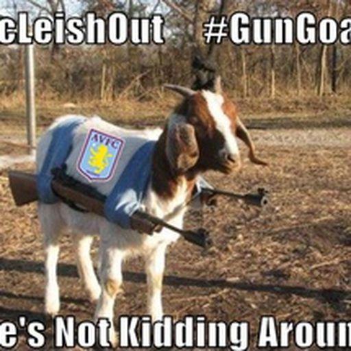Gun Goat