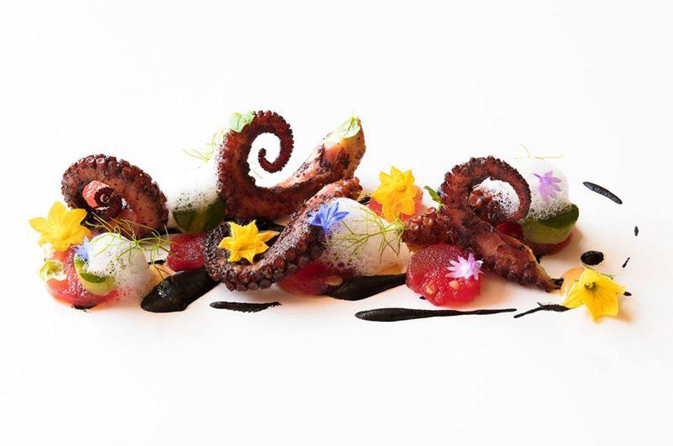 Octopus from Acquerello