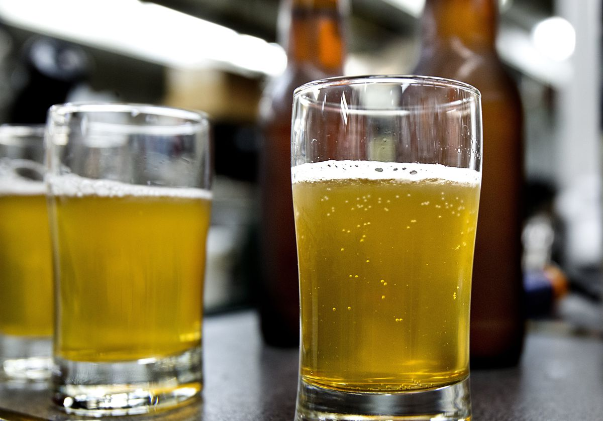 The next big thing for beer could be bugs, NC State scientists say