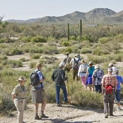 In this Tuesday, March 13, 2012 photo, Park Service volunteers, foreground left and right, close up ranks as hikers make their way back towards vans during a supervised tour of Quitobaquito Springs at Organ Pipe Cactus National Monument along the U.S.-Mexico border south of Ajo, Ariz. A third of the monument is open to the public without escort, but the remaining two-thirds of the preserve is closed to the public without an escort - mainly because of the danger of encounters with smugglers.
