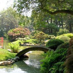 """<b>Brooklyn Botanical Garden</b>: 990 Washington Avenue Brooklyn, NY; <a href=""""http://www.bbg.org/visit/weddings"""">book it here</a>. [<a href=""""https://www.flickr.com/photos/50034763@N00/21534447/in/photolist-2Unrz-gTMLq-4UEvYm-2Uk8g-2U5Dj-bPQmjH-5uJHCr-5uJ"""