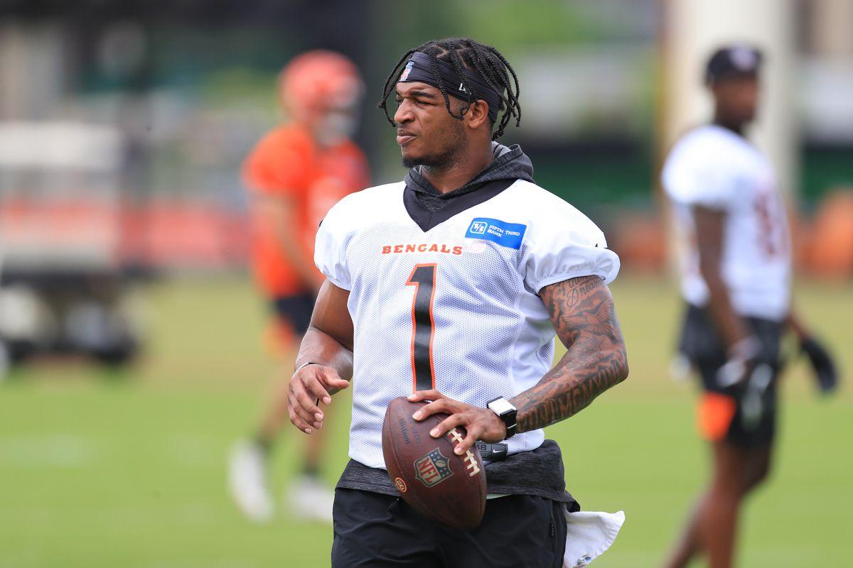 NFL: JUN 08 Bengals OTA