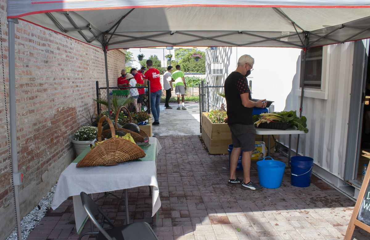 Barbara's Market at the Nurture Life Farm and Community Hub, which will offer families healthy cooking demos and popup farmers markets.