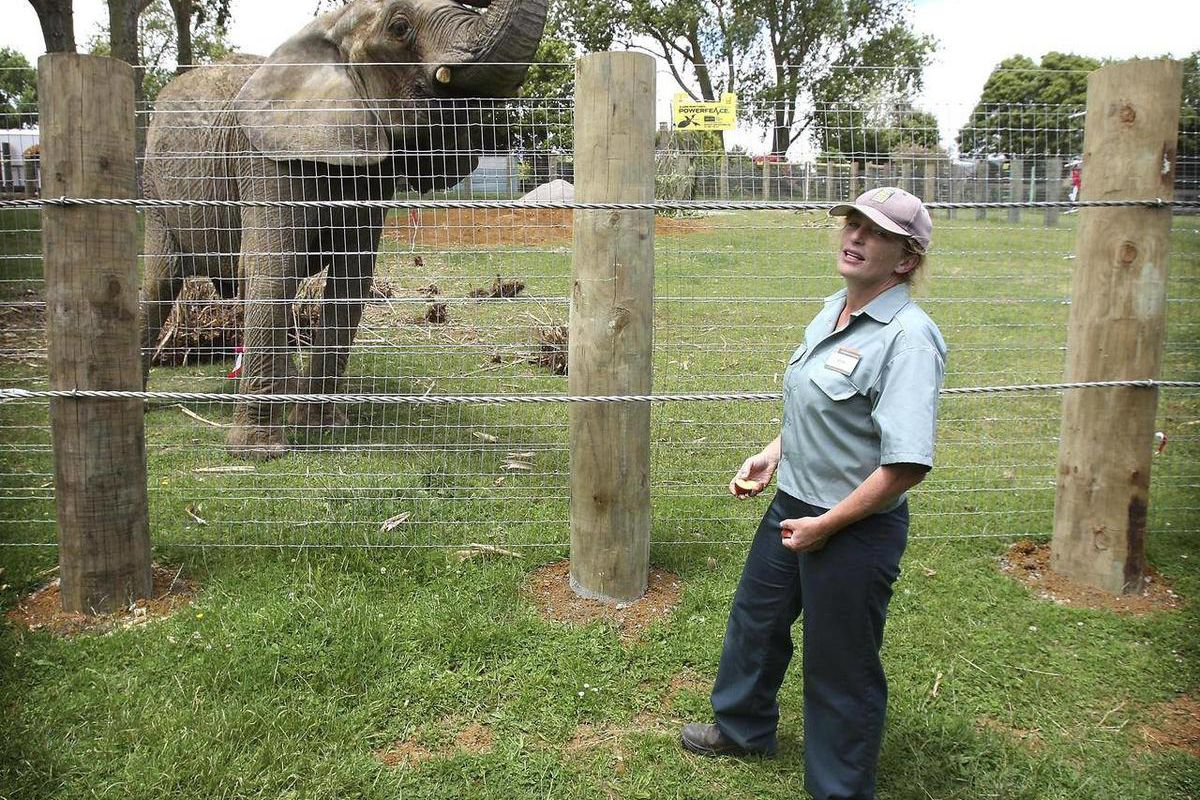 In this photo taken on Dec. 20, 2009, Franklin Zoo and Wildlife Sanctuary vet Dr. Helen Schofield stands near Jumbo, a former circus elephant, at Franklin Zoo in Auckland, New Zealand. The elephant killed Schofield who cared her at the zoo on Wednesday, A