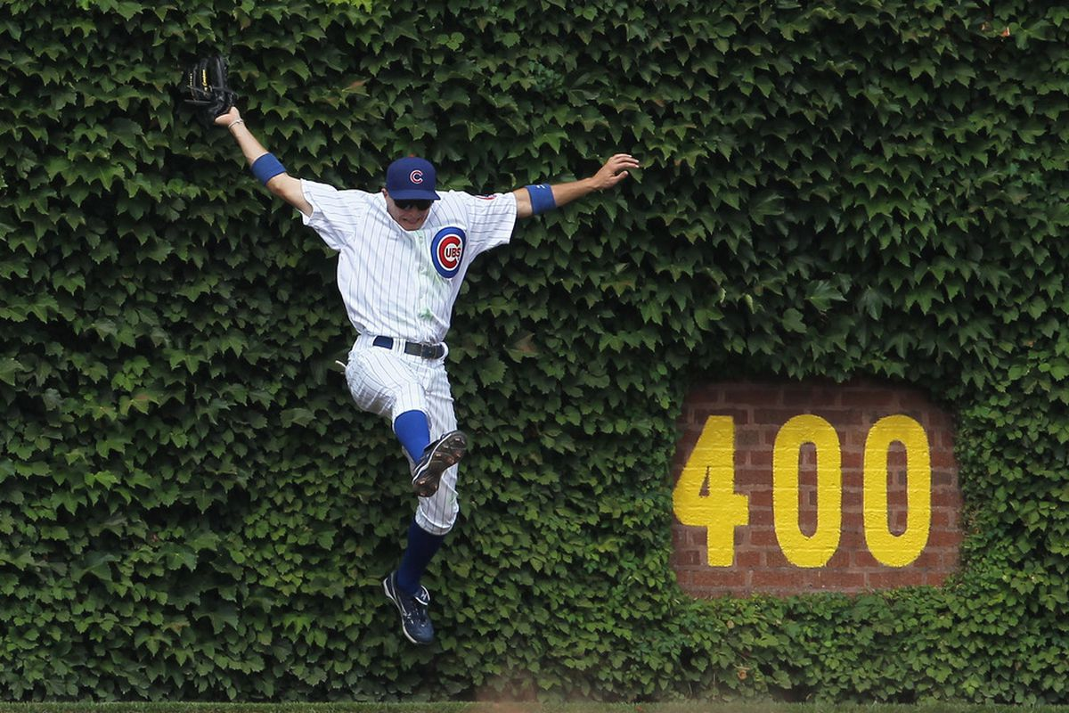 Tony Campana of the Chicago Cubs falls into the ivy after making a catch against the Cincinnati Reds at Wrigley Field on August 5, 2011 in Chicago, Illinois. (Photo by Jonathan Daniel/Getty Images)