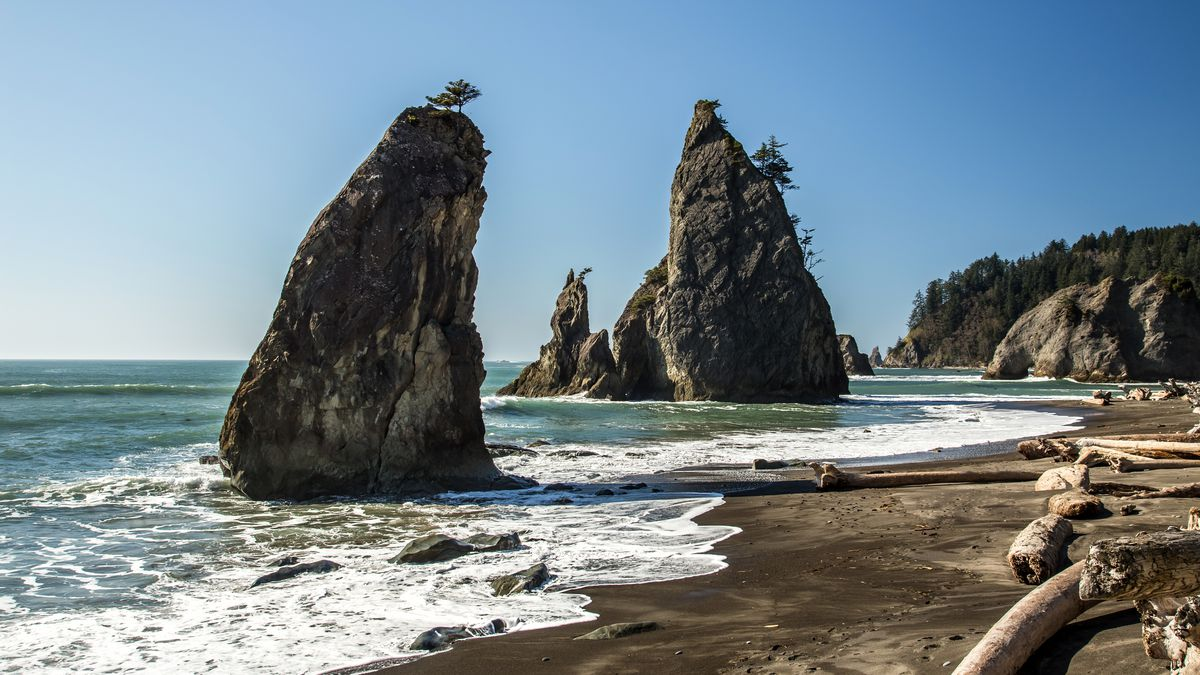 Sea stacks on the Wild Rialto Beach in Olympic National Park