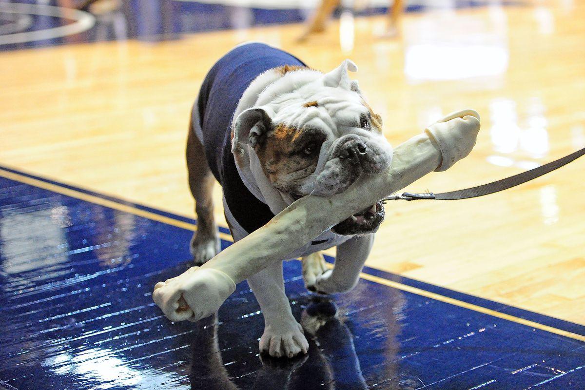 Nice bone, dude.
